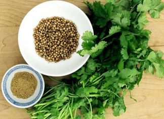 Korijander je dobar antioksidans