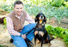 Šta saditi ako imate psa