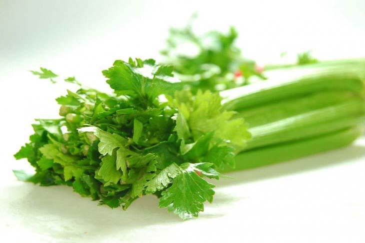 Lekovitost biljaka i namirnica
