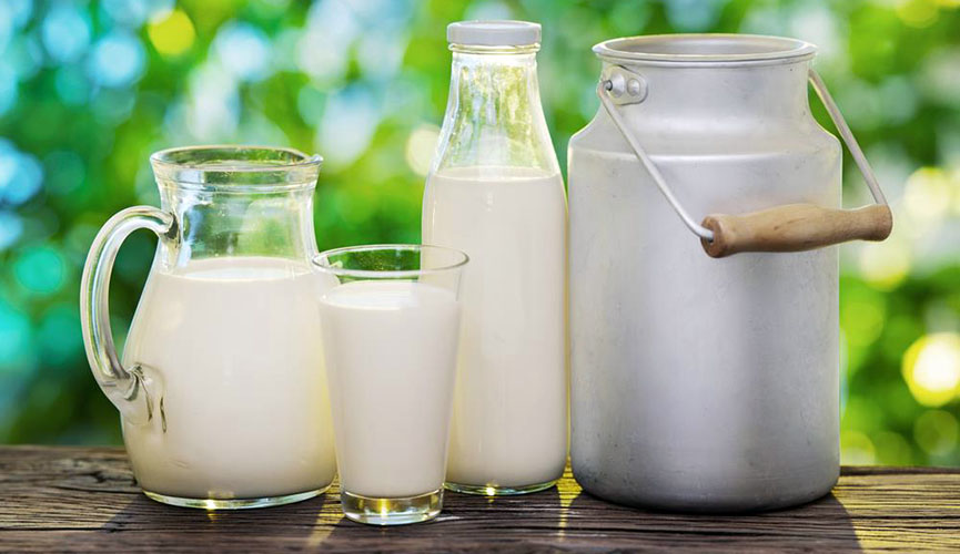 Dijeta sa mlekom